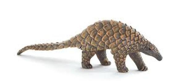 Indian Pangolin Toy Animal Fgiure