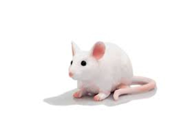 White Mouse Toy Figure