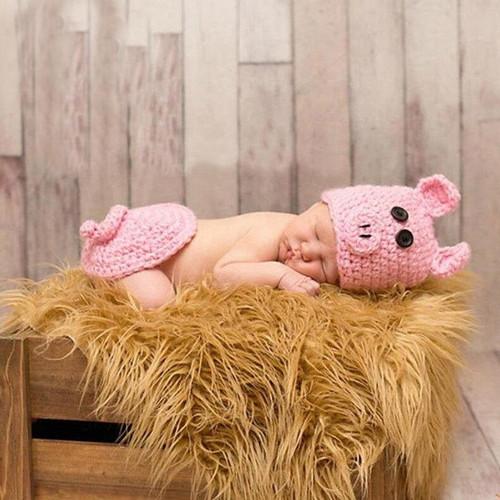 Piggy photography prop