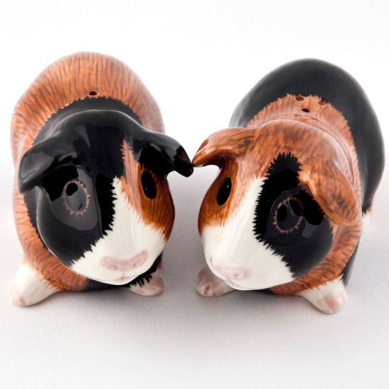 Guinea Pig Salt and Pepper Multi
