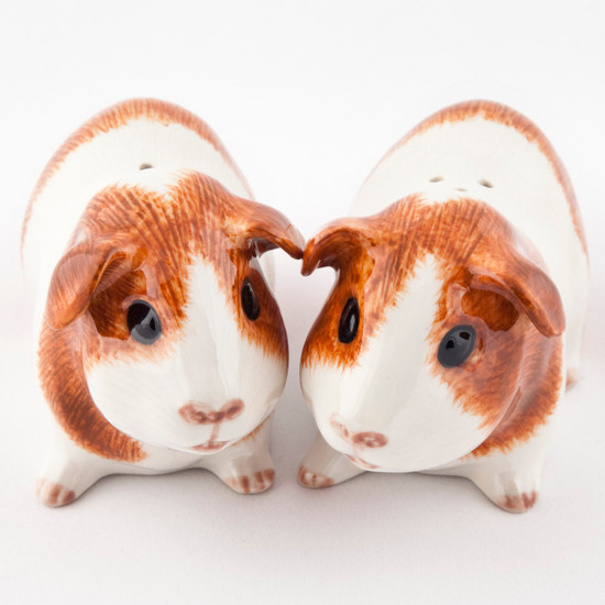 Guinea Pig Salt and Pepper Dutch