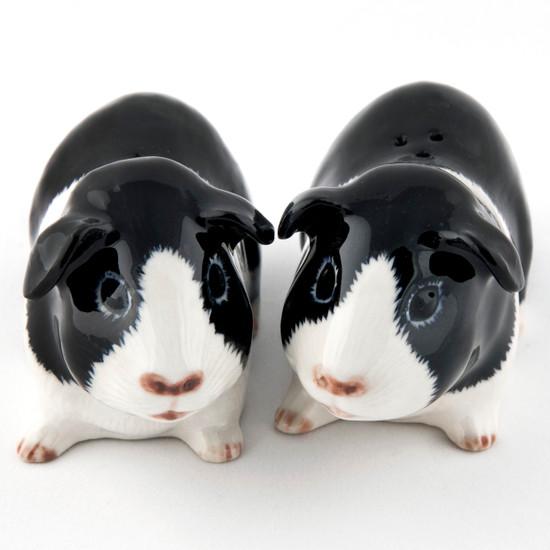 Guinea Pig Salt and Pepper Black/White