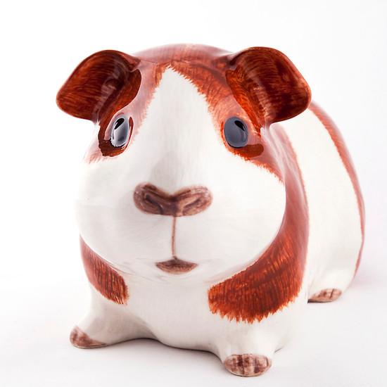 Guinea Pig Money Box Dutch