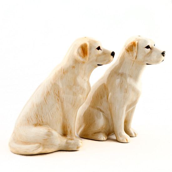 Labrador Salt and Pepper Gold