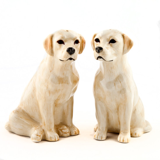 Labrador Salt and Pepper Gold