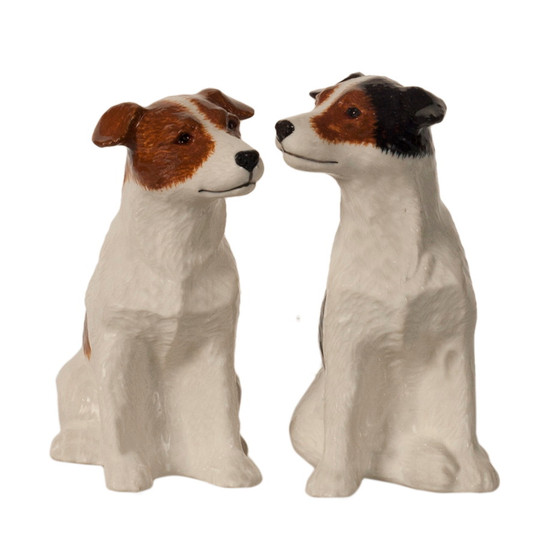 Jack Russell Salt and Pepper