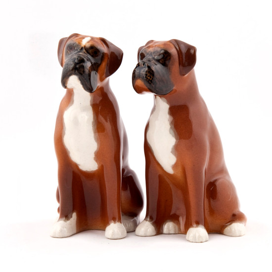 Boxer Salt and Pepper