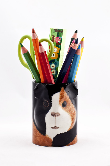 Guinea Pig Pencil Pot multi