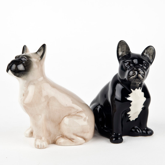 French Bulldog Salt and Pepper fawn/black