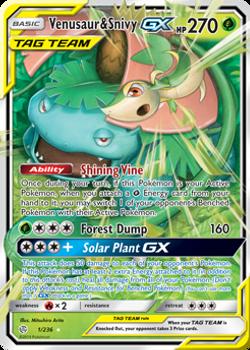 SM12-001/236UR Venusaur & Snivy GX
