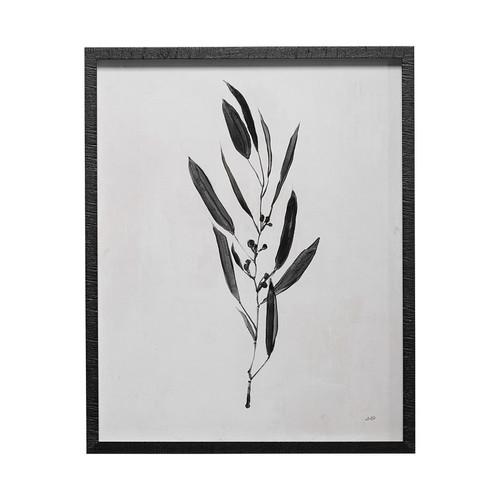 13067 -Botanical Study I