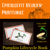 """Emergent Reader """"I See a Pumpkin"""" Kindergarten High Frequency Words Lifecycle"""