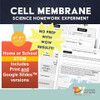 Cell Organelles Activity   Distance Learning for Google Slides™ + print version