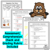 Substitute Groundhog - Groundhog's Day Read Aloud Activity Pack - Digital Google Version