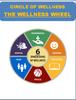 The Wellness Wheel