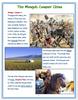 Yuan China - The Mongols Conquer China + Assessments