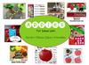 Complete Week of Apple Themed Unit Activities for Preschool or Tot School