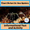 Informational Text Activity: Giant Antarctic Sea Spiders