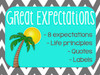 Great Expectations Classroom Culture Resources (chevron theme)