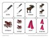 Irregular Plural Nouns Playing Cards