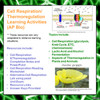 Cell Respiration/Thermoregulation Learning Activities for AP Biology (Distance Learning)