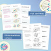 Mitosis Foldable For Binders & Interactive Notebooks