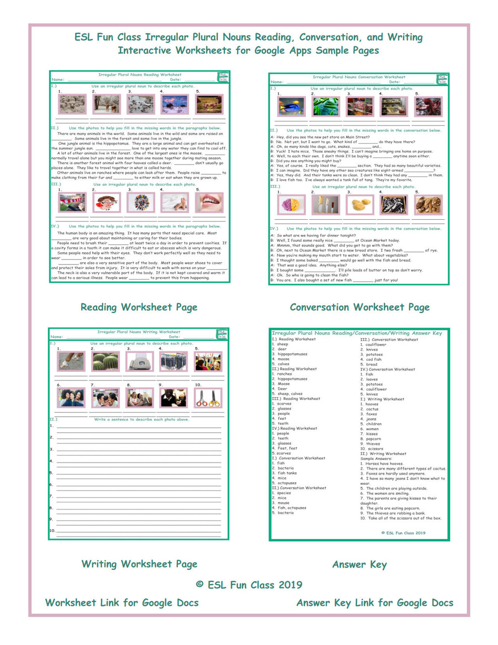 Irregular Plural Nouns Read-Converse-Write Interactive Worksheets for Google Apps LINKS