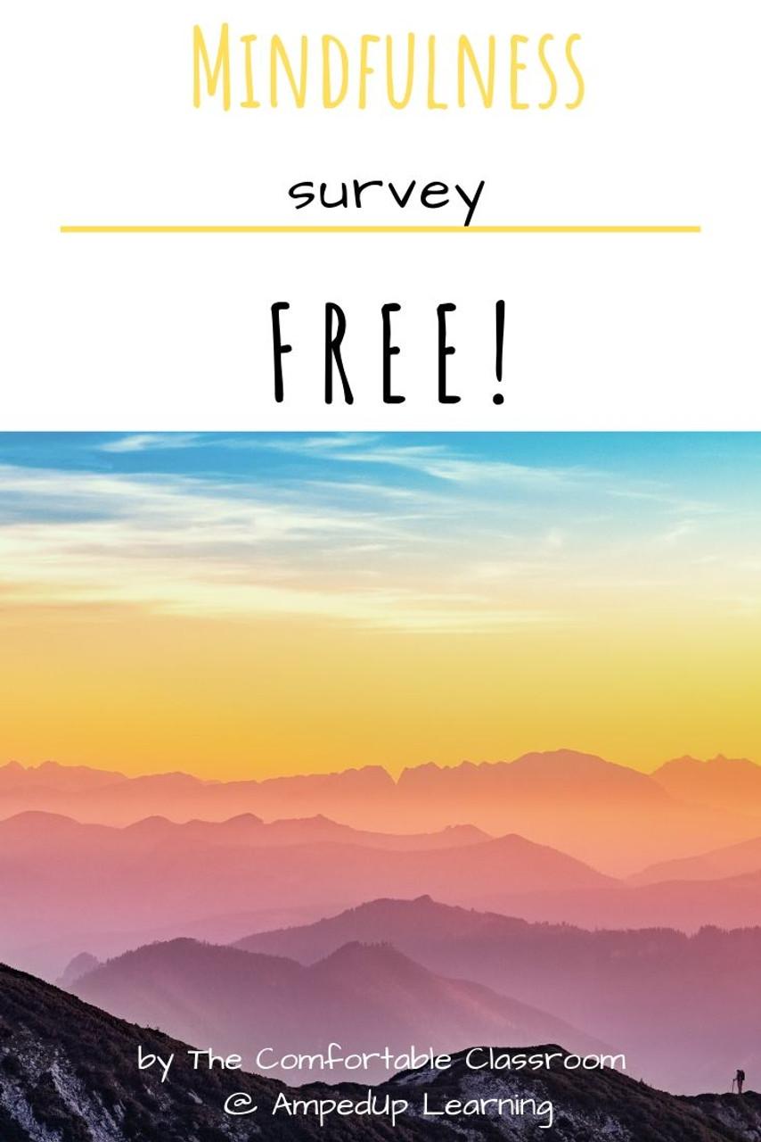 Mindfulness Survey - FREE