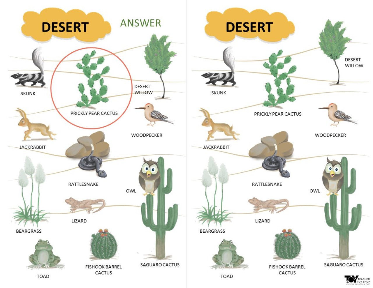 Ecosystems and Biomes Desert Game