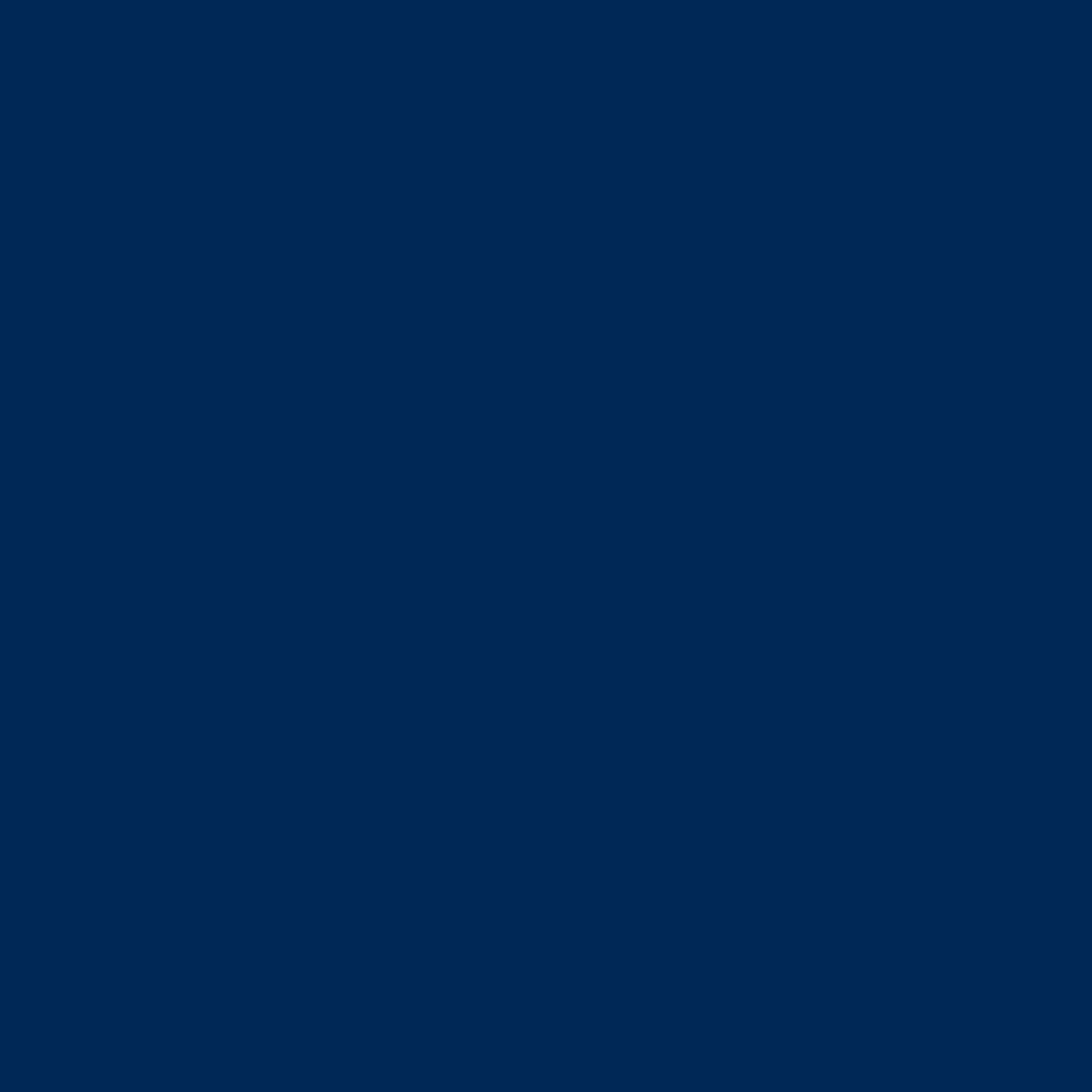 PMS 295C Dark Blue (secondary)