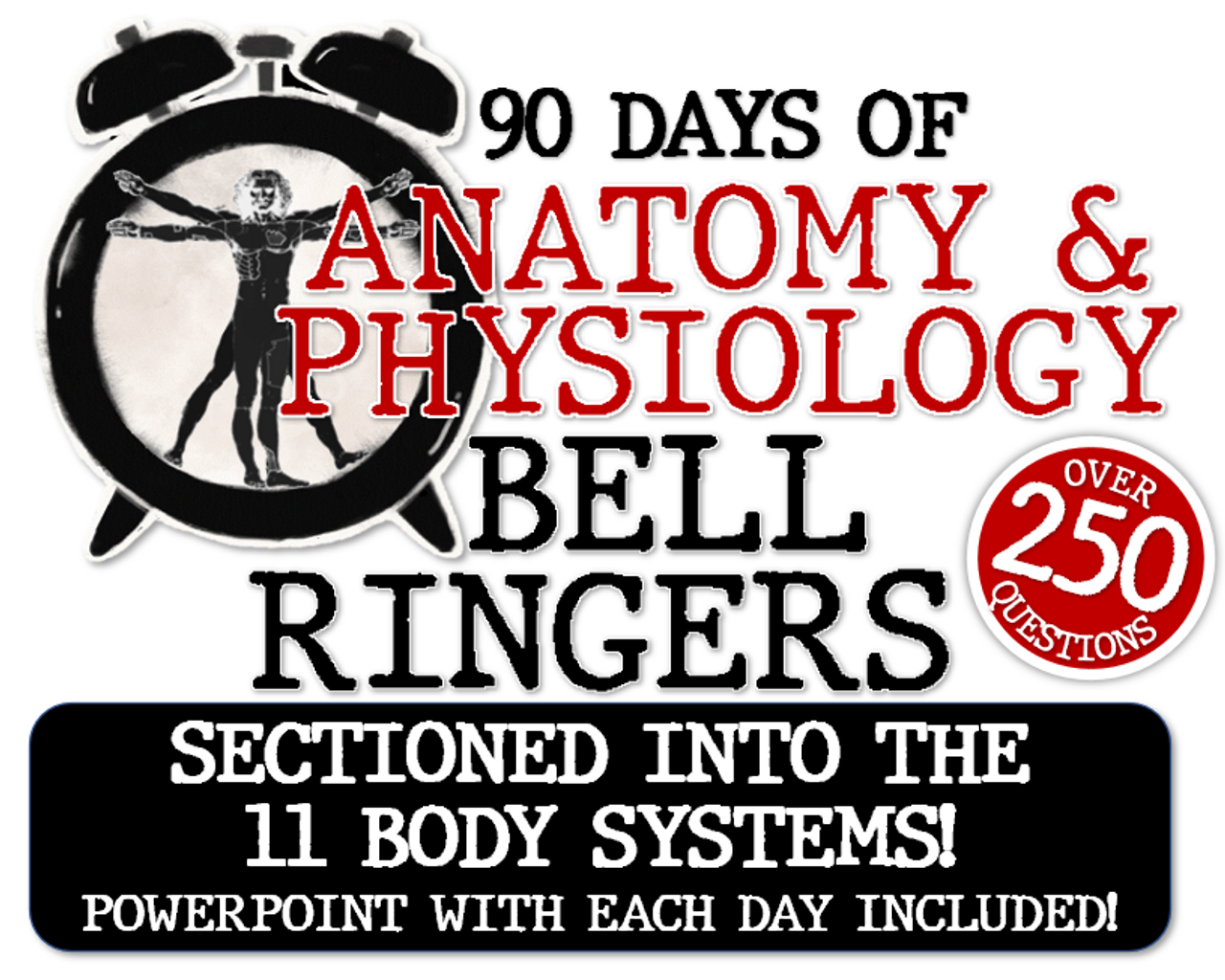 90 DAYS of A&P Bell Ringers- Divided into Body Systems- 250 Questions! w/ PPT