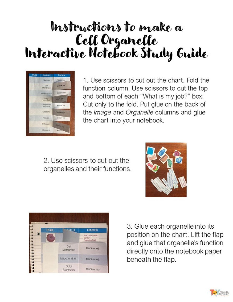 Animal Cells Organelle Activity | Google Slides™ for Distance Learning + print Interactive Notebook page