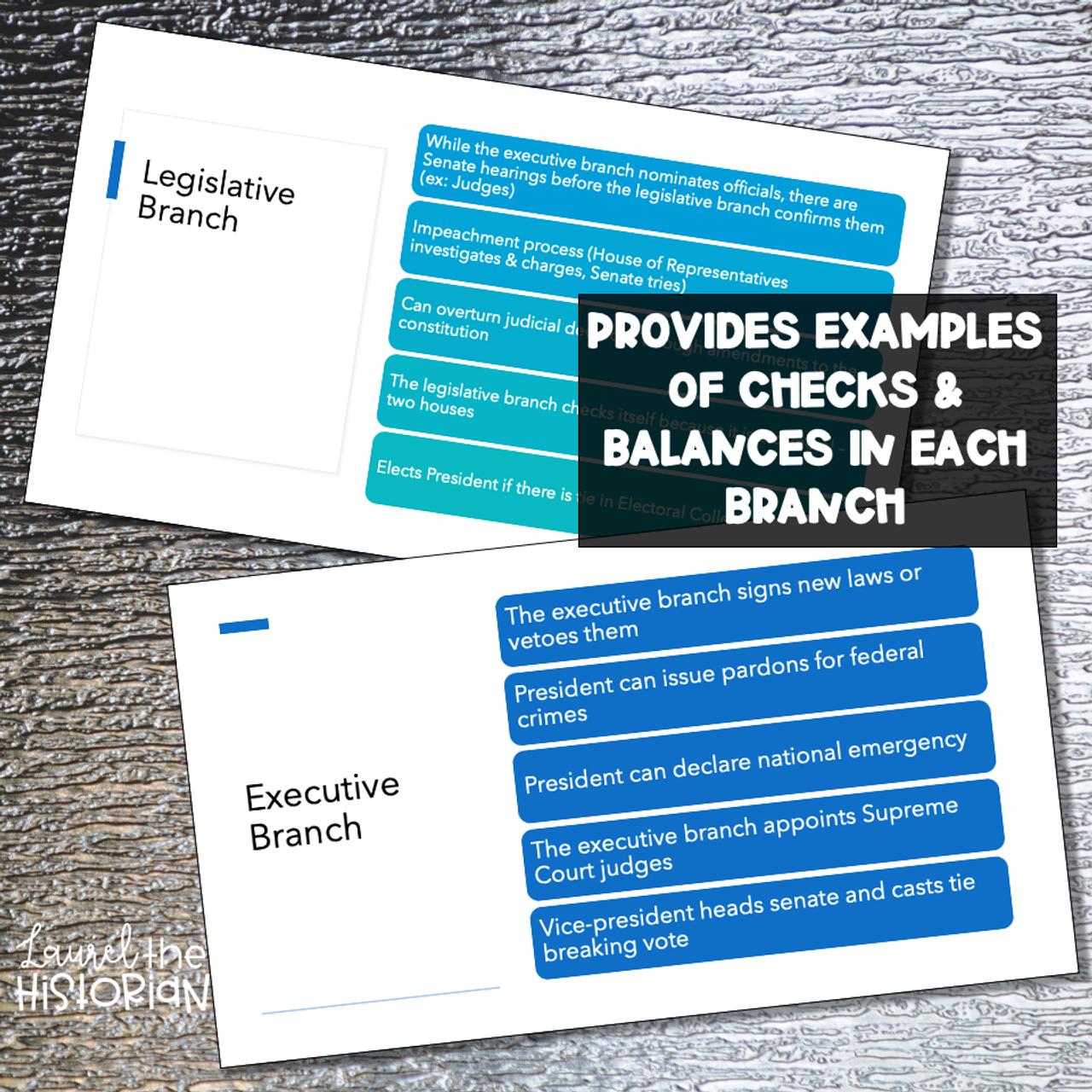 3 Branches Checks and Balances Presentation