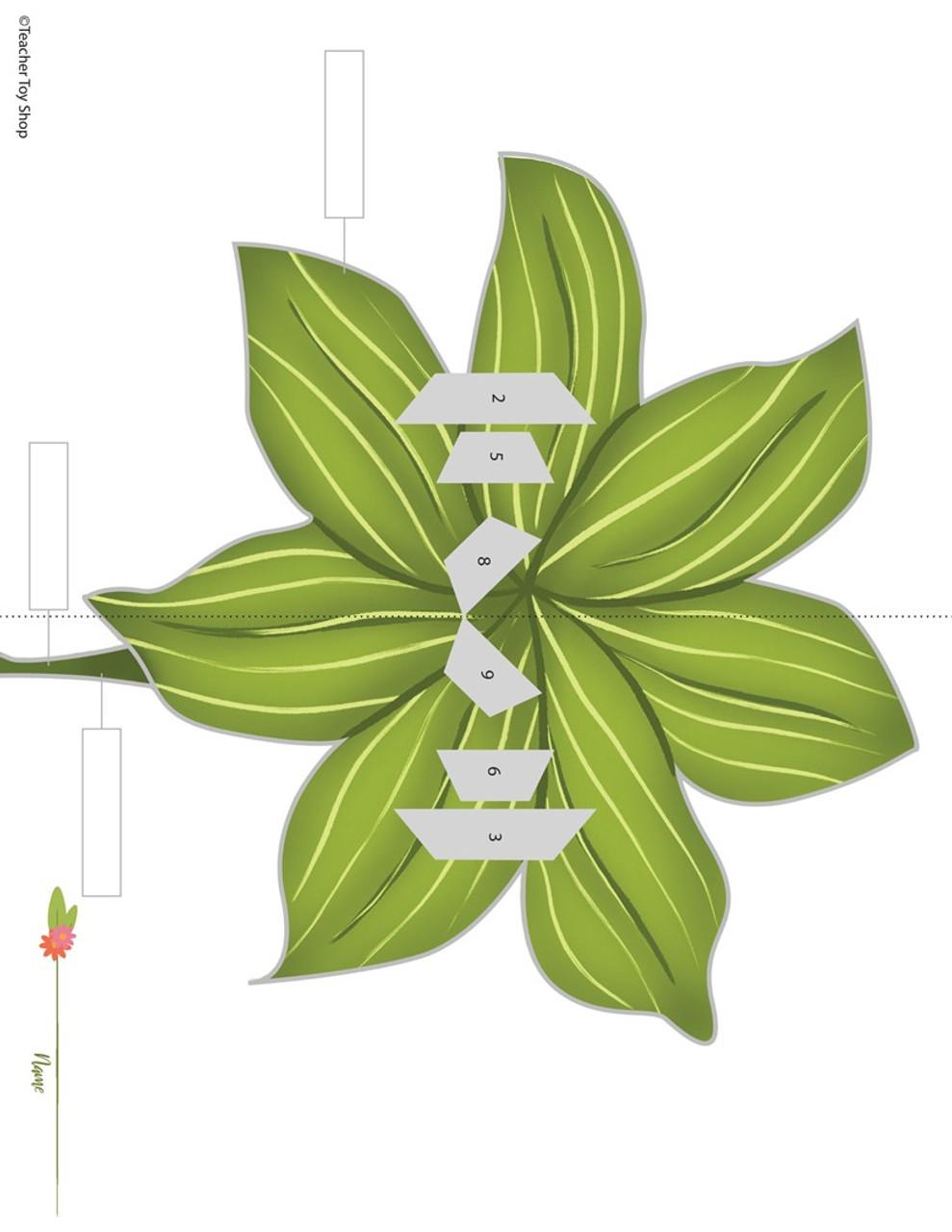 Parts of a Flower STEM Activity