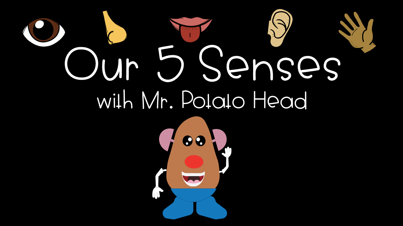 Our 5 Senses with Mr. Potato Head