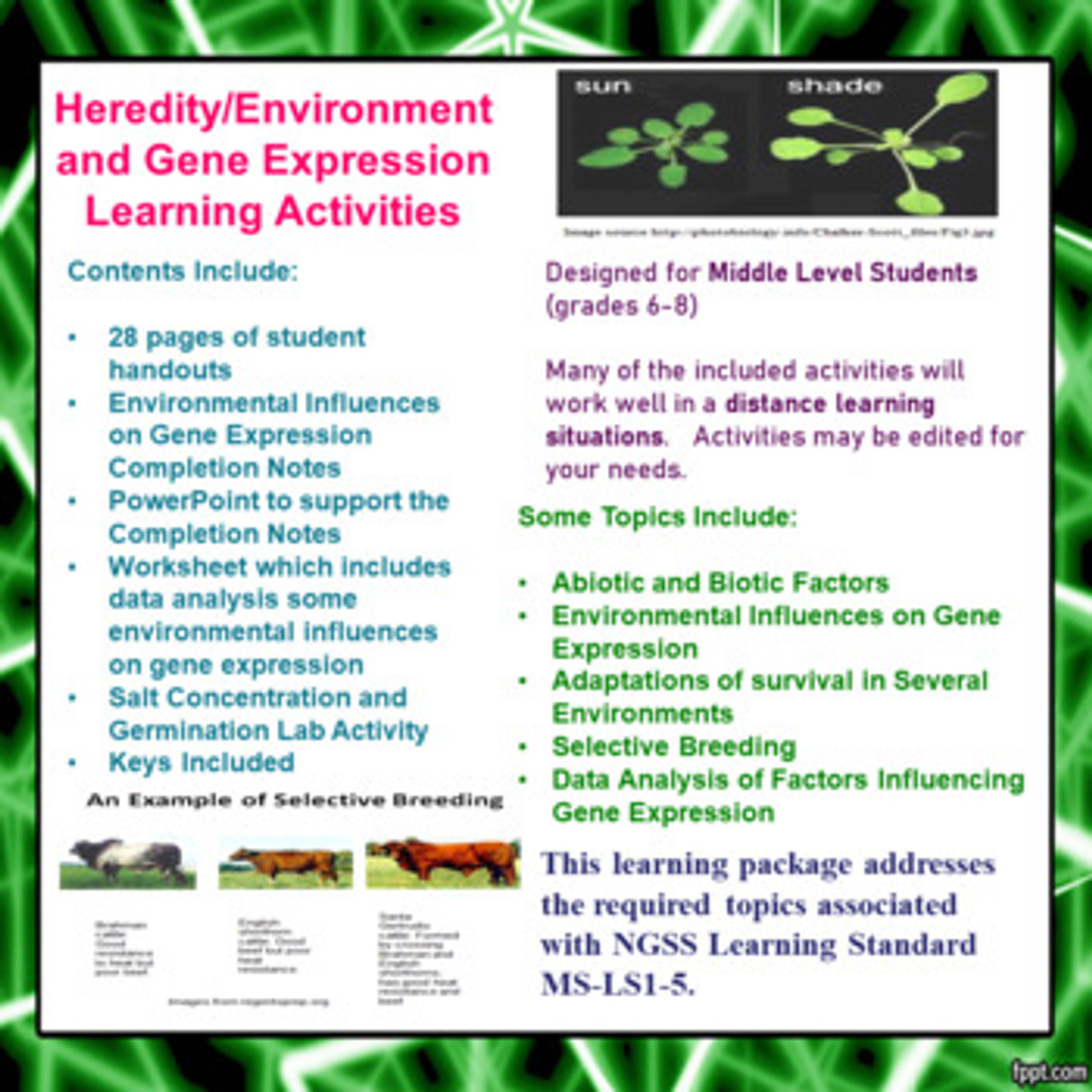 Environment/Heredity and Gene Expression for Middle School Science Learning Package