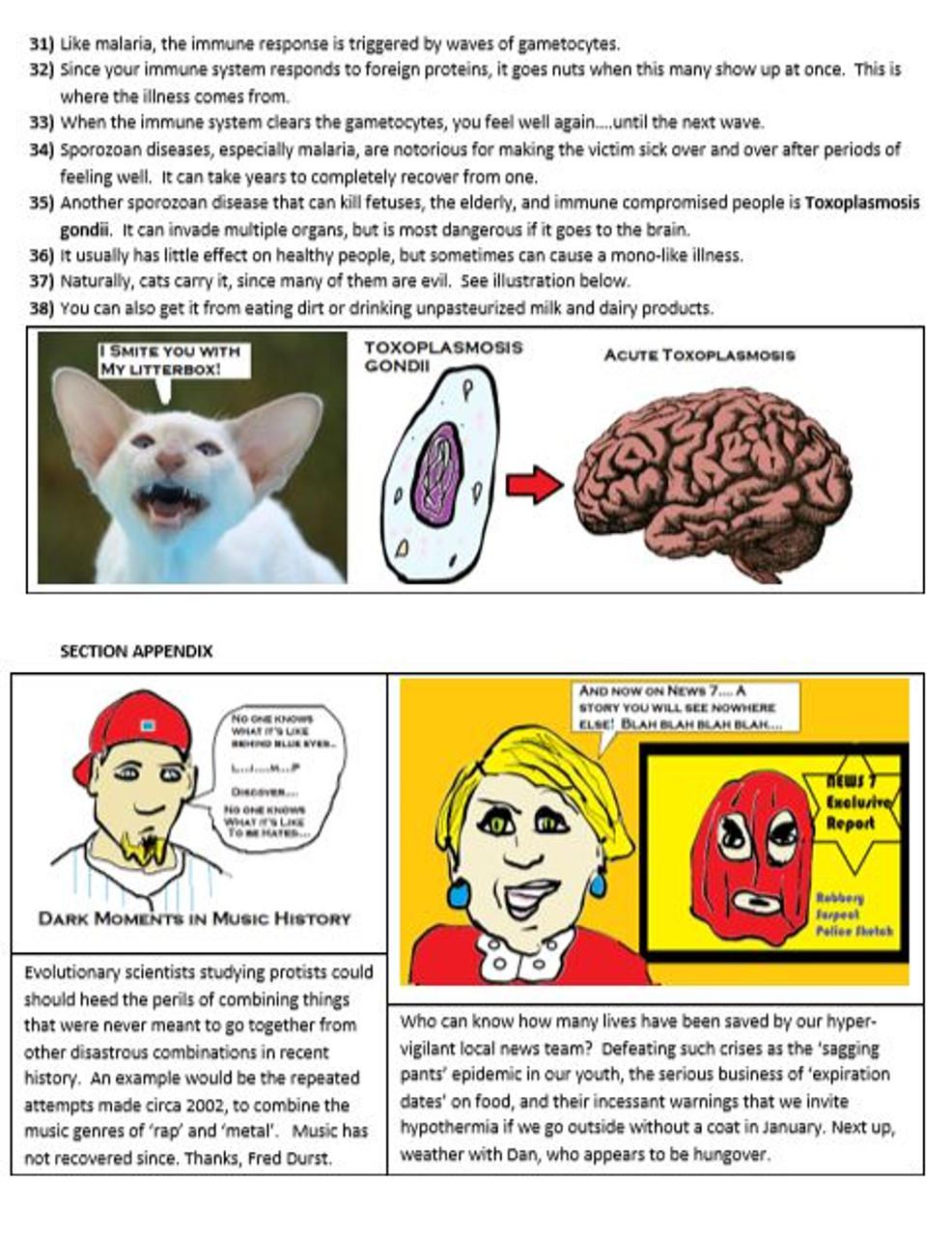 AP & College Biology:  KINGDOM PROTISTA