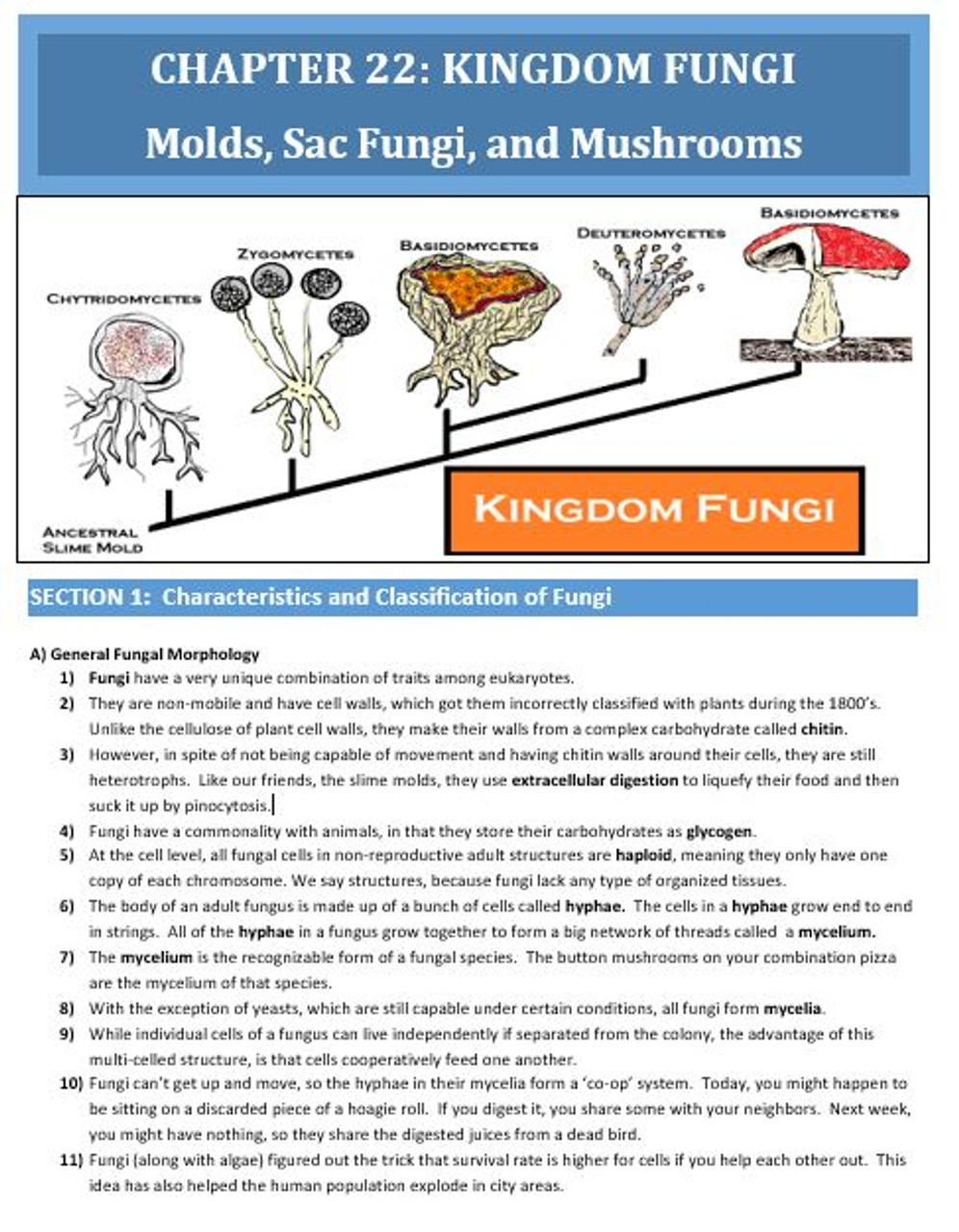 Camp's Biology By the Numbers:  Review of Kingdom Fungi