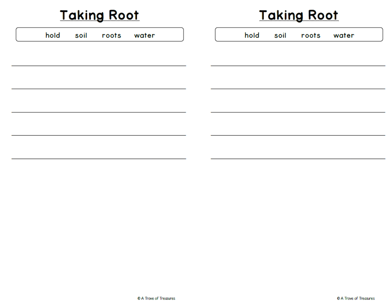 A Plant's Parts Booklet **With Activity Differentiation**