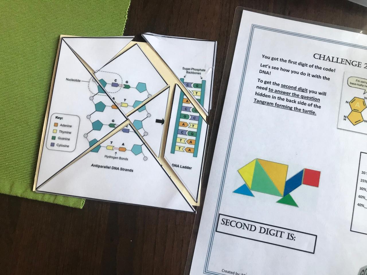 Biology EOC Review ESCAPE ROOM (Box 3)