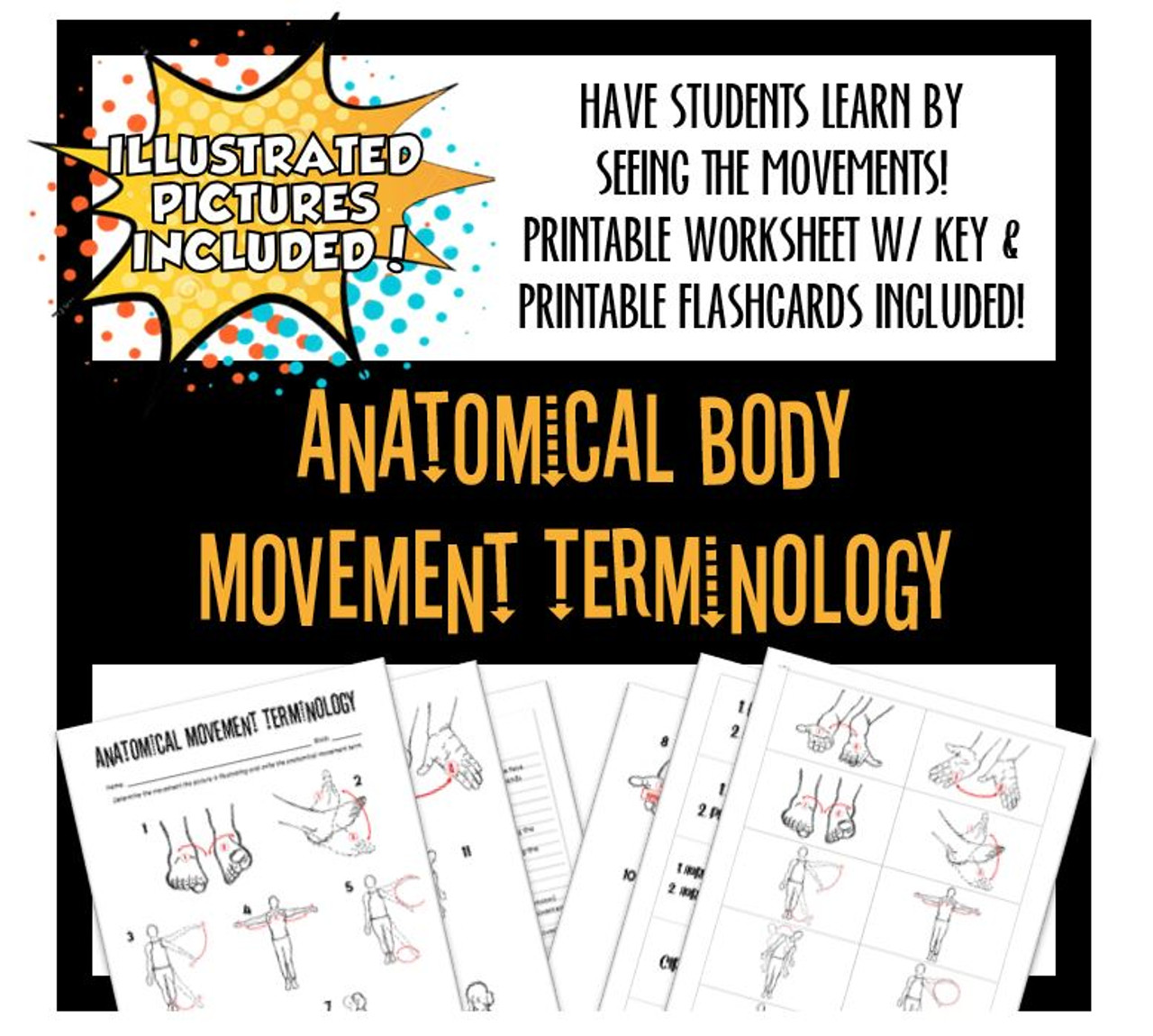 Anatomical Body Movements w/ Illustrations- Worksheet & Flashcards! Distance Learning Options!