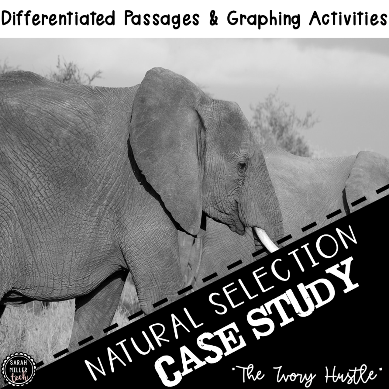 Science Reading Activity | Natural Selection