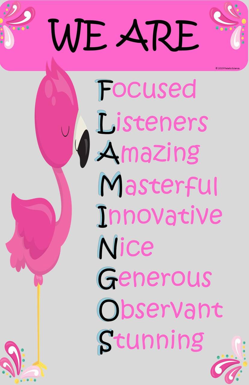 Flamingo Mindset Poster (11x17 size)