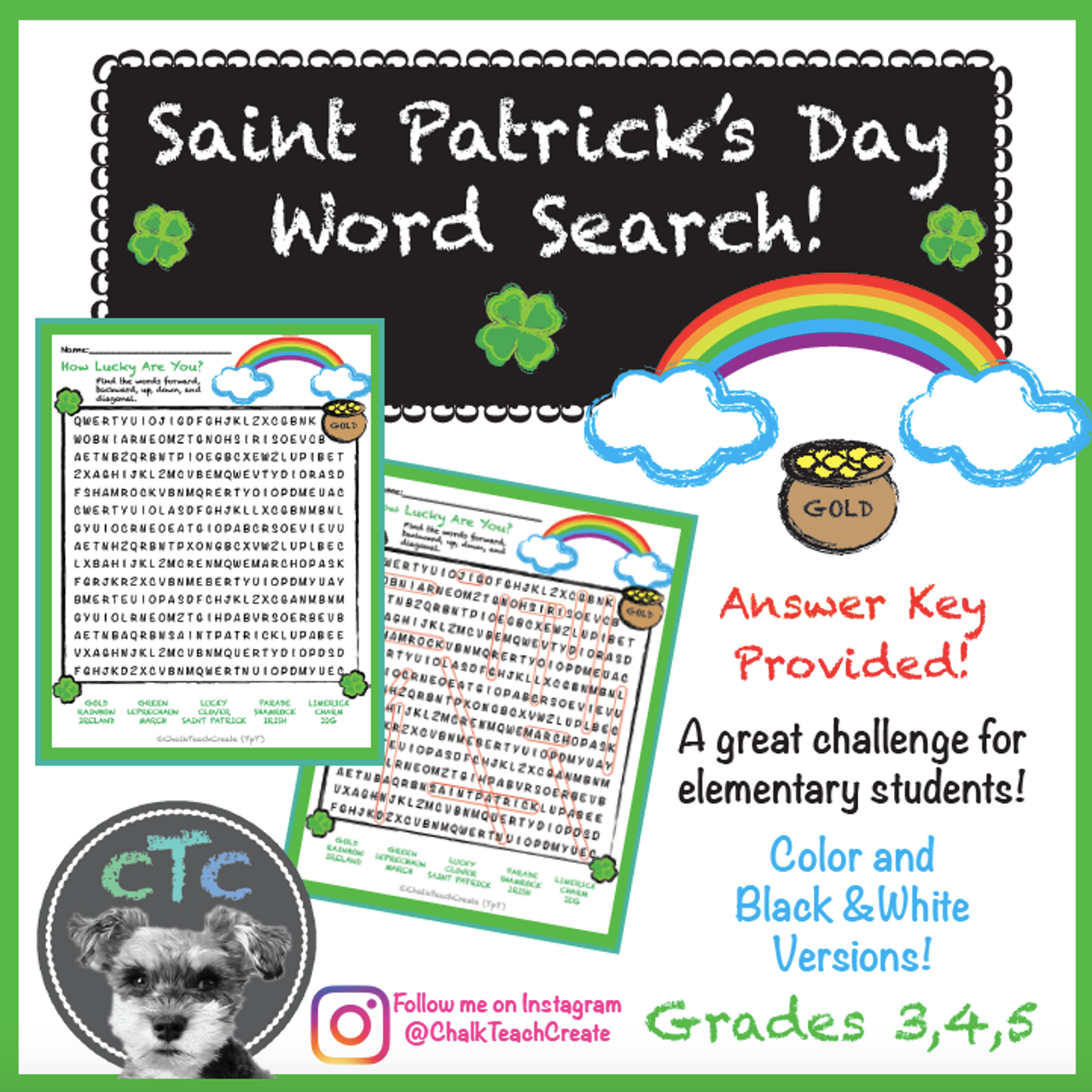 St. Patrick's Day Word Search!
