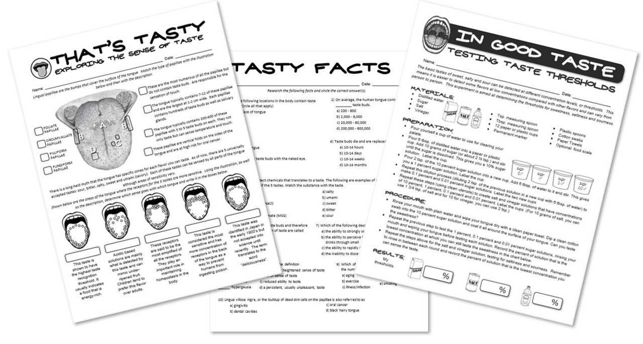That's Tasty- Exploring the Science of Taste! Worksheets and Lab included!