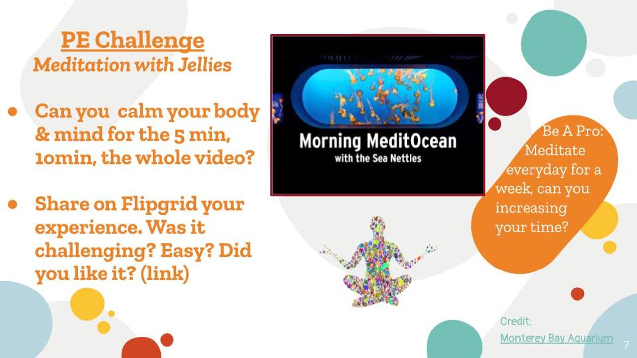 Meditation with Jelly Fish