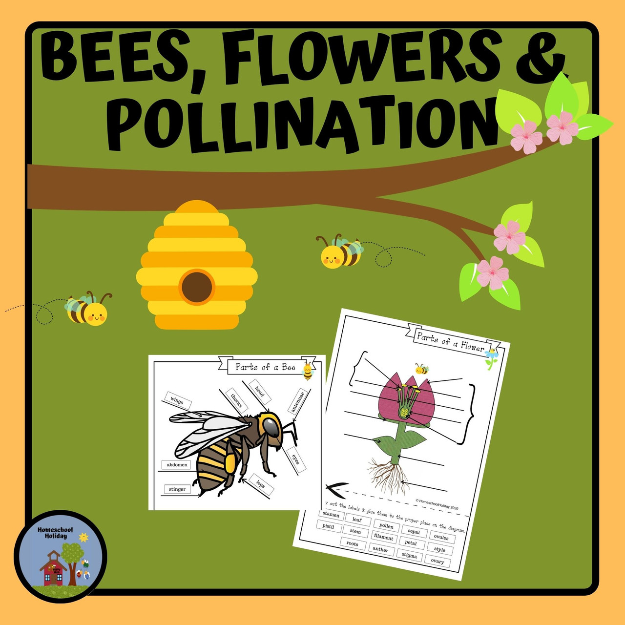 Bees, Flowers and Pollination - Digital and Paper resources
