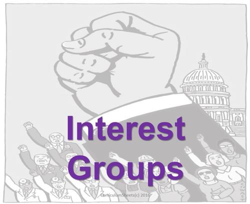 Interest Groups Flipped Unit/ Bundle