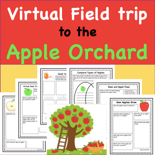Virtual Field Trip to the Apple Orchard