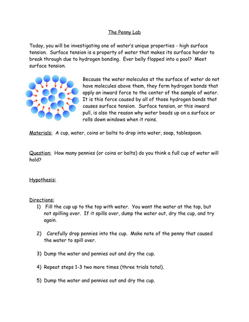 Properties of Water Investigation - The Penny Lab